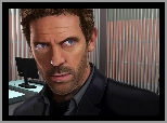 Dr House, Hugh Laurie, Grafika