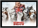 Eight Below, Paul Walker, psy