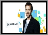 Dr House, Serial, Hugh Laurie