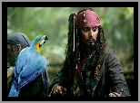 piraci_z_karaibow_2, Johnny Depp, papuga
